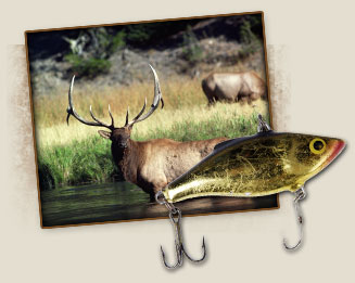 Hunting and Fishing in Clark Fork, Idaho
